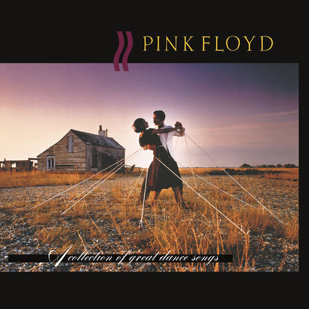 PINK FLOYD RECORDS - A Collection of Great Dance Songs   Pink Floyd
