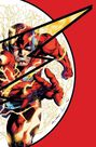 DC COMICS - Absolute Flashpoint