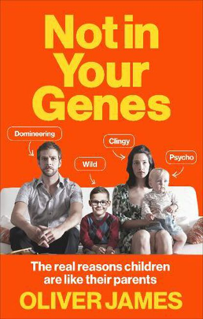 RANDOM HOUSE UK - Not in Your Genes The Real Reasons Children are Like Their Parents