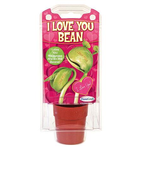 DUNE CRAFT - Dunecraft Message Beans I Love You