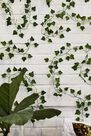 Urban Outfitters - Assorted Ginger Ray Decorative Vines
