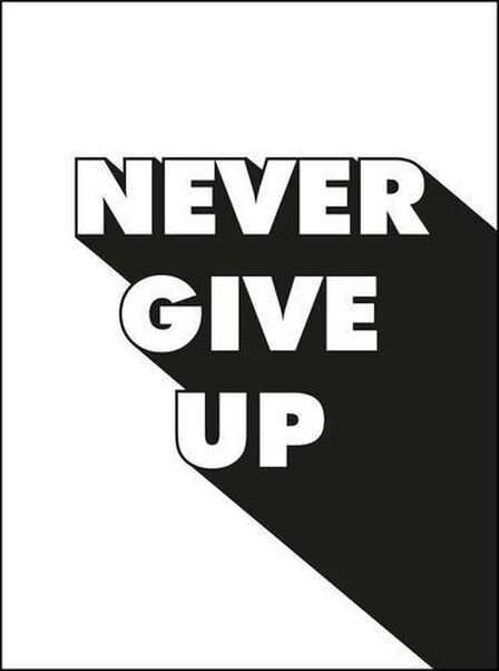 SUMMERSDALE PUBLISHERS - Never Give Up