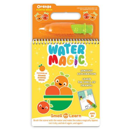 SCENTCO - Scentco Scented Brush Water Magic Orange