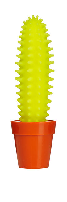 NPW - Cactus Highlighter Yellow